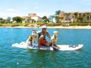 How to SUP with Your Dog, sup paddle boards liberty station, sup pups san diego, sup rental san diego, paddle boarding san diego, sup rentals, stand up paddle san diego, sup rental, paddle boarding in san diego, sup san diego, paddleboard lessons, paddle boarding la jolla, paddleboard san diego, san diego paddle board, paddle board rental san diego, stand up paddle board san diego, paddle board rentals san diego, paddle board san diego, san diego paddle boarding, stand up, paddle boarding san diego, kayak rentals san diego, san diego kayak rentals, san diego paddle board rentals
