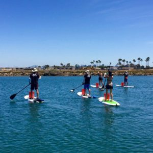 Contact The SUP Connection, paddle boarding san diego, sup rental, san diego paddle boarding, san diego paddle board, stand up paddle board san diego, paddle board san diego, stand up paddle boarding san diego, san diego kayak rentals, kayak rentals san diego, paddleboard lessons, paddle board rental san diego, san diego paddle board rentals, sup yoga, sup san diego, Sup pups, Sup pups san diego, San diego sup yoga, Sup lesson san diego, Where to paddleboard with your dog , san diego paddleboard lessons, Sup rental san diego, La jolla cove paddleboarding, stand up paddle board lessons san diego, point loma paddleboard rentals, liberty station sup rentals