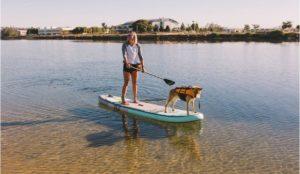 SUP Pups California San Diego