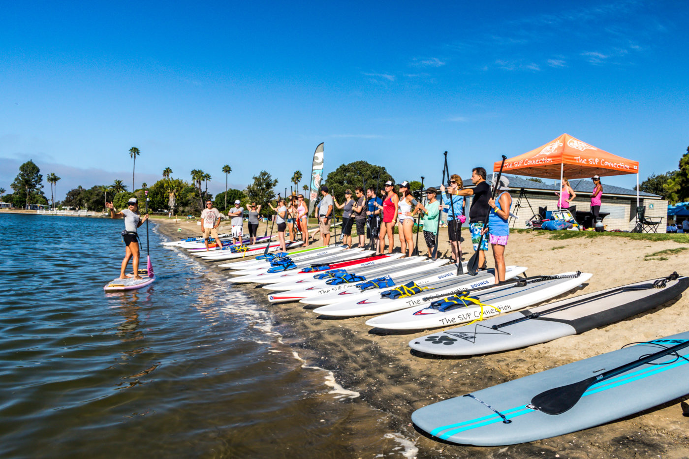 San Diego SUP Lessons, paddle boarding san diego, sup rental, san diego paddle boarding, san diego paddle board, stand up paddle board san diego, paddle board san diego, stand up paddle boarding san diego, san diego kayak rentals, kayak rentals san diego, paddleboard lessons, paddle board rental san diego, san diego paddle board rentals, sup yoga, sup san diego, Sup pups, Sup pups san diego, San diego sup yoga, Sup lesson san diego, Where to paddleboard with your dog , san diego paddleboard lessons, Sup rental san diego, La jolla cove paddleboarding, stand up paddle board lessons san diego, point loma paddleboard rentals, liberty station sup rentals